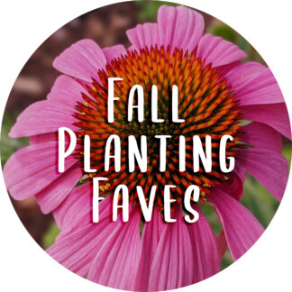 FALL PLANTING FAVES